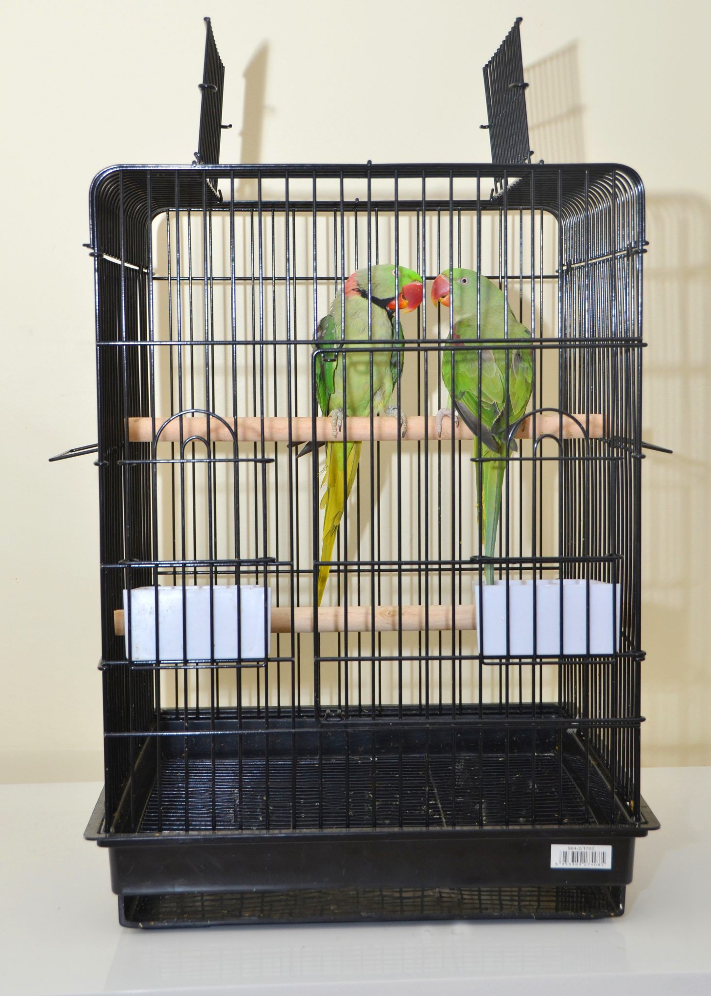 brand-new-good-size-cage birds4u.net