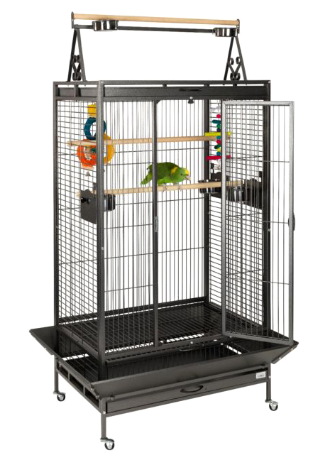 Liberta Cambridge cage